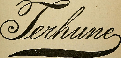 "Image from web page 966 of ""Medical directory of New York, New Jersey and Connecticut"" (1899)"